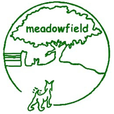 meadowfield-1_720203770